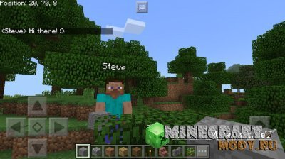 ChatCoords - Мод/Аддон Minecraft PE 1.1.3.1 - 1.1